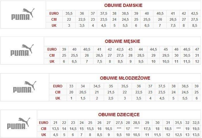 7df8d157fde Buty piłkarskie Puma Adreno III IT JR 104050 07 - sklep Sport-home.pl