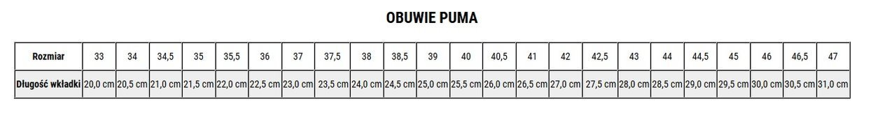 Buty piłkarskie Puma Future 19.4 IT 105549 01